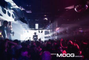 preview_image2-default-1-300x201 - Moog
