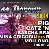 schloss-dargun-openair-2019